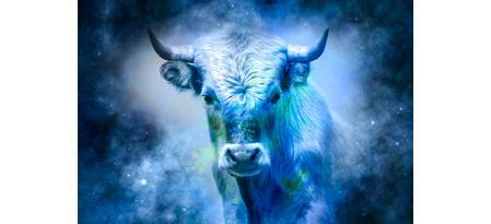 2021 год: к нам спешит год Белого Быка